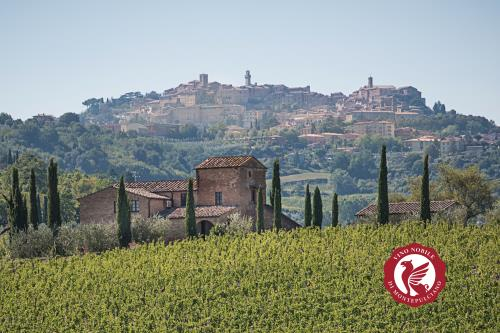 Wine and Montepulciano: in a unique word, Nobile
