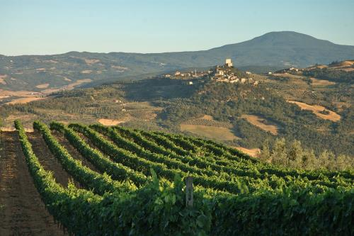 Orcia, the most beautiful wine in the world
